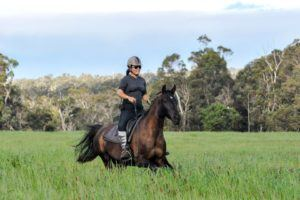 Challenge 2A: The 'stable platform' and advancing ridden horse